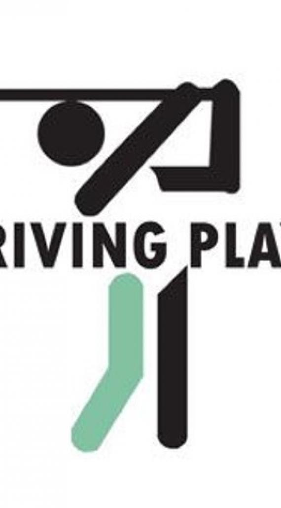 Drivingplay 2017